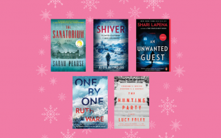 Mystery Thriller Books to Read on a Snow Day